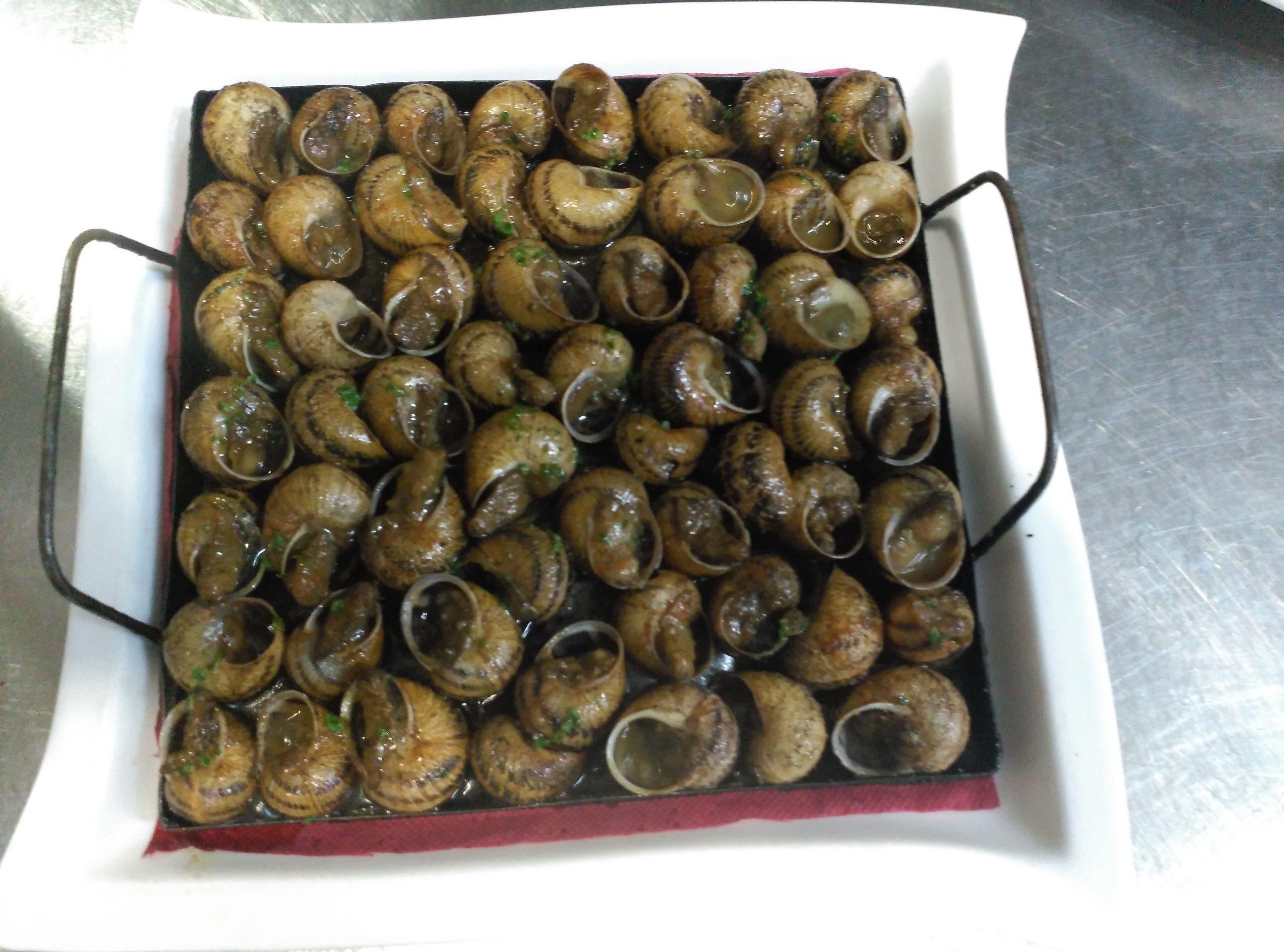 Caracoles a la llauna - cargols a la llauna - plato restaurante Cal Feliuet Belltall